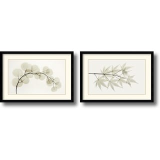 Albert Koetsier 'Eucalyptus and Japanese Maple' Framed Art Print Set of 2 -  23 x 16-inch (each)