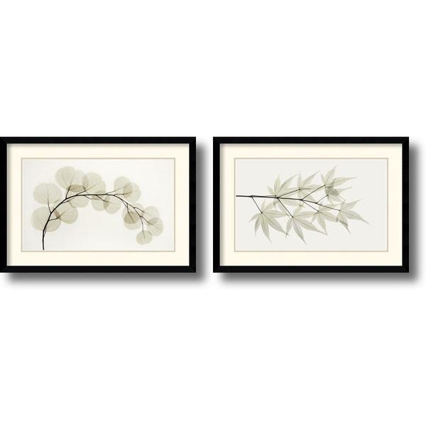 Albert Koetsier 'Eucalyptus and Japanese Maple' Framed Art Print Set of 2 - 23 x 16-inch (each)