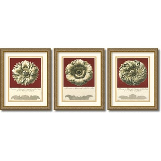 Guerra 'Rosone Antico' Framed Art Print Set 18 x 22-inch (Each)