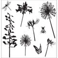 "I Cling Stamps 5""X5"" Sheet-Dandelions"