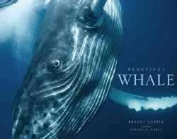 Beautiful Whale (Hardcover)