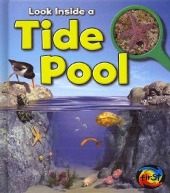 Tide Pool (Hardcover)