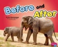 Before and After (Paperback)