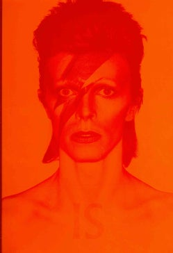 David Bowie Is... (Hardcover)
