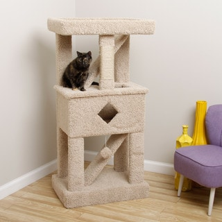 Cat Play Gym Fully Assembled & Solid Wood Cat Condo