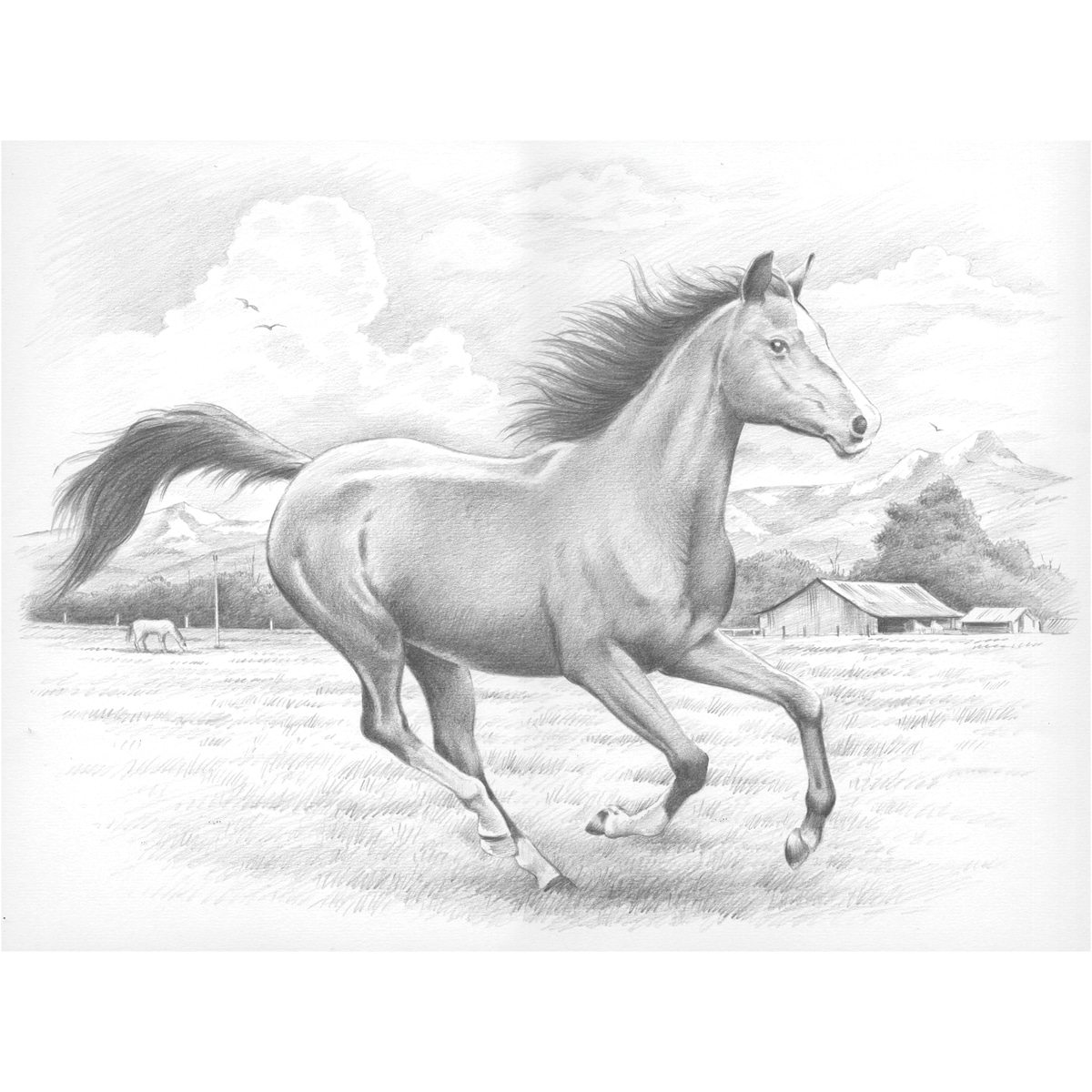 "Sketching By Number Kit 11-1/2""X15-1/2""-Galloping Horse"