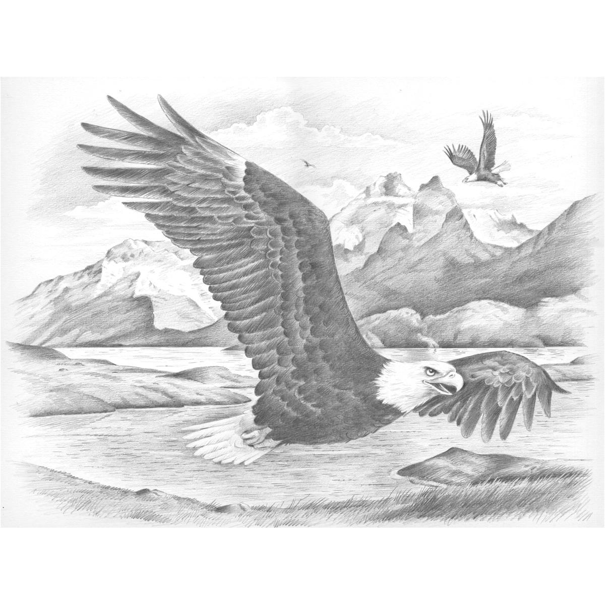 Sketching By Number Kit 11-1/2X15-1/2-Eagles