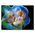 Kathie McCurdy 'Big Blue Flower' Canvas Art