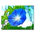 Kathie McCurdy 'Heavenly Blue Morning Glory' Canvas Art