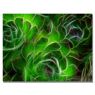 Kathie McCurdy 'Hens and Chicks' Canvas Art