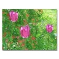 Kathie McCurdy 'Tulips' Canvas Art