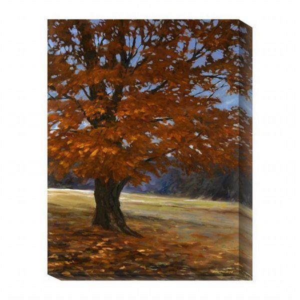 Bruce Braithwaite 'Fall Maple' Canvas Art