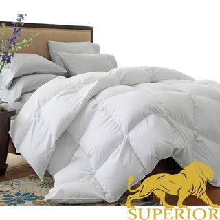 Oversized 330 Thread Count All Season White Down Blend Comforter