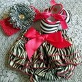 Zebra Bloomers & Shoes Baby Girl Gift Set