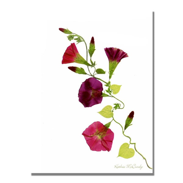 Kathie McCurdy 'Morning Glories' Canvas Art