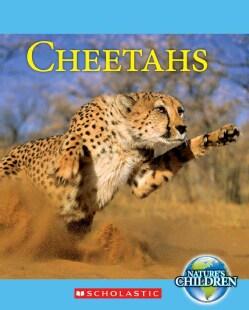 Cheetahs (Paperback)