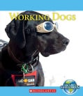 Working Dogs (Paperback)