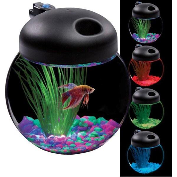 KollerCraft LED Globe Bowl 1-Gallon Aquarium Kit
