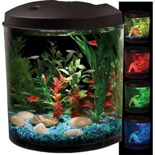 KollerCraft AquaView 180 View LED Light 3.5 Gallon Aquarium Kit