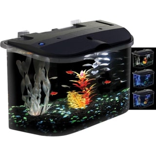 KollerCraft AquaView 15005 Rounded 5-Gallon Aquarium Kit
