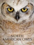 The Complete Book of North American Owls (Paperback)