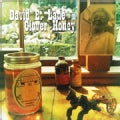 DAVID E. LANE - CLOVER HONEY