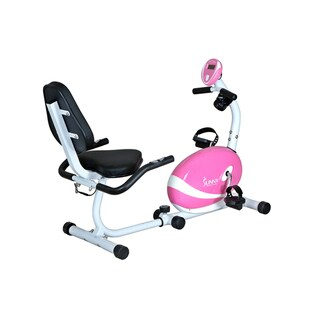 Steel-and-plastic Sunny Health Fitness Folding Recumbent X ...