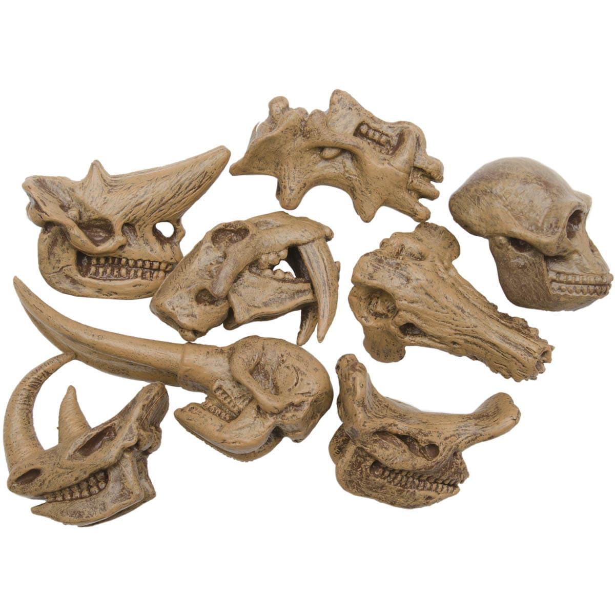 Prehistoric Mammal Skulls Plastic Miniatures In Toobs
