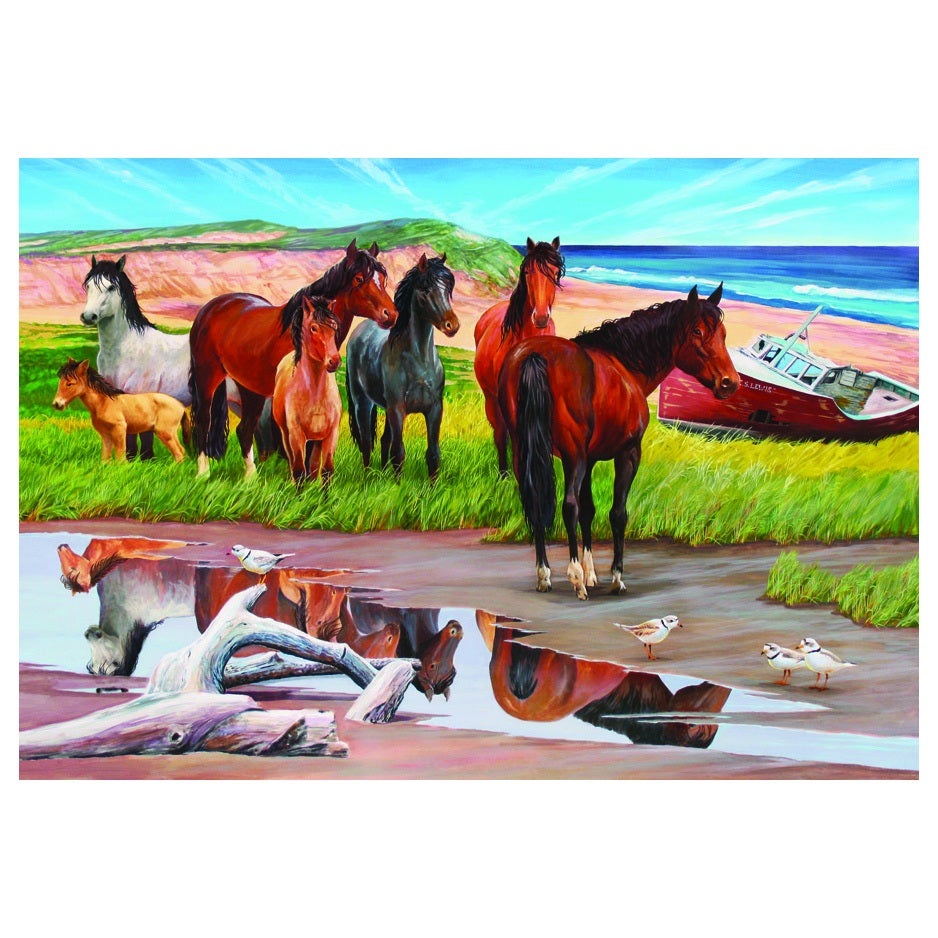 Outset Media Sable Island 2000-piece Puzzle