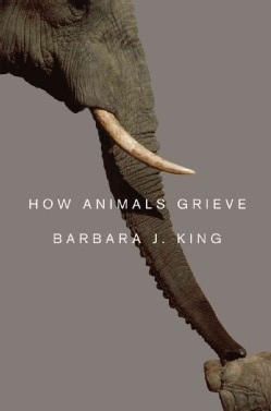 How Animals Grieve (Hardcover)