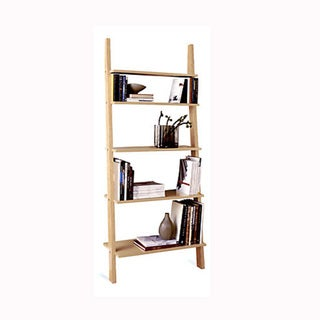Pisa Style Leaning Ladder Shelves