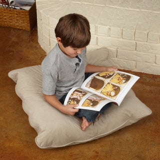 Isabella Suede 28- inch Floor Pillow