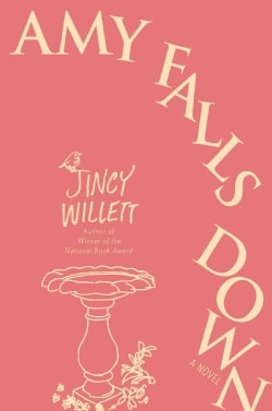 Amy Falls Down (Hardcover)