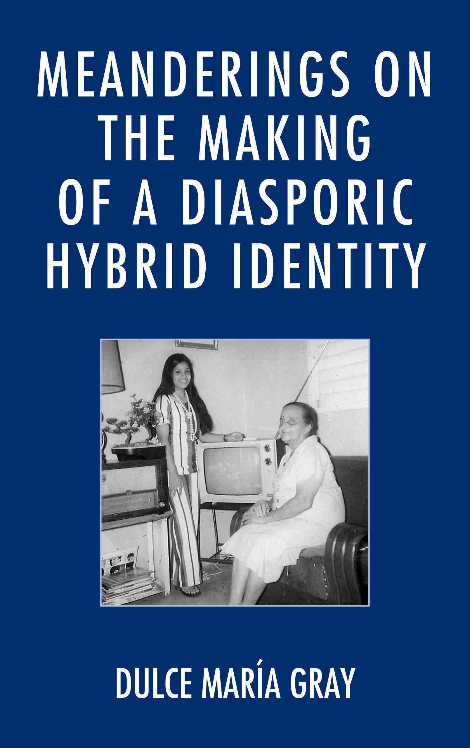 Meanderings on the Making of a Diasporic Hybrid Identity (Hardcover)