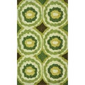 Hand-tufted Portia Lime Rug (2'3 x 3'9)