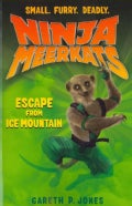 Escape from Ice Mountain (Paperback)