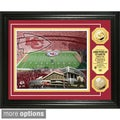 Licensed NFL Stadium Photo Mint Frame