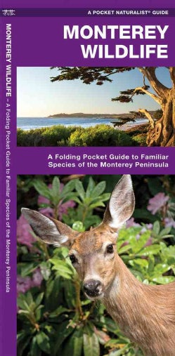 Monterey Wildlife: A Folding Pocket Guide to Familiar Species of the Monterey Peninsula (Wallchart)