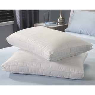 Famous Maker Lyocel Blend Down Alternative Pillows (Set of 2)