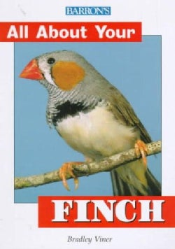 All About Your Finch (Paperback)