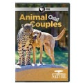 Nature: Animal Odd Couples (DVD)
