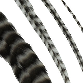 Donna Bella Striped Black and White Feather Hair Extensions