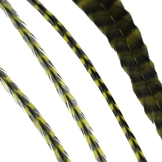 Donna Bella Striped Yellow Feather Hair Extensions