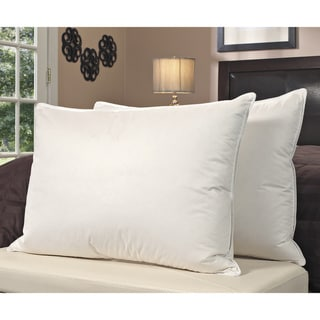 European Legacy Moisture Wicking Down Alternative Pillows (Set of 2)