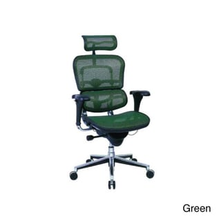 Eurotech Multifunction Mesh Chair with Headrest
