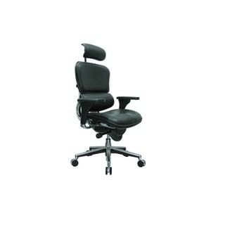 Eurotech Ergohuman Ergonomic Executive Leather Chair