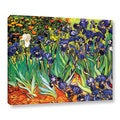Vincent VanGogh &#39;Irises in the Garden&#39; Wrapped Canvas Art
