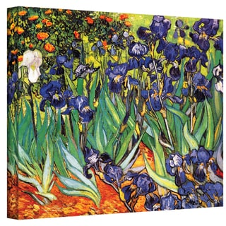 Vincent VanGogh 'Irises in the Garden' Wrapped Canvas Art