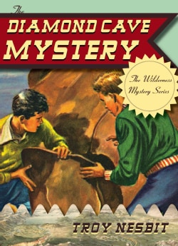 The Diamond Cave Mystery (Paperback)