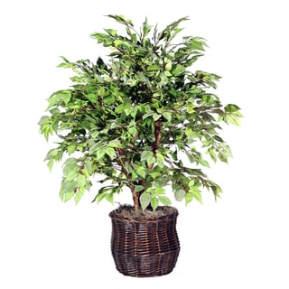4 foot Extra Full American Elm Decorative Plant in Rattan